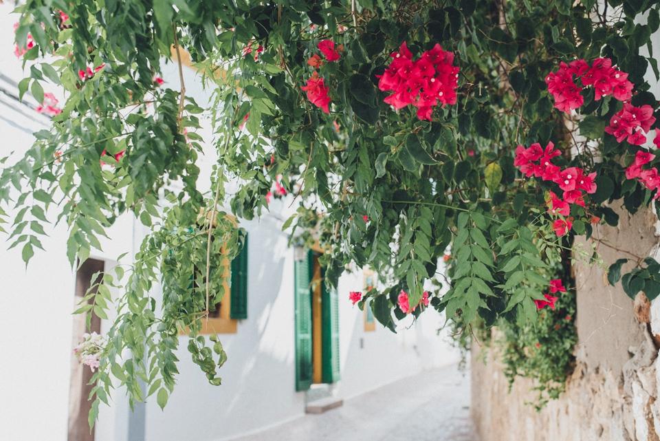 bohemian-ibiza-kreativ-wedding_0008 hochzeitsfotograf hochzeitsvideo ibiza bohemian weddingSaskia & Pierre Bohemian Bohemian Ibiza Weddingbohemian ibiza kreativ wedding 0008