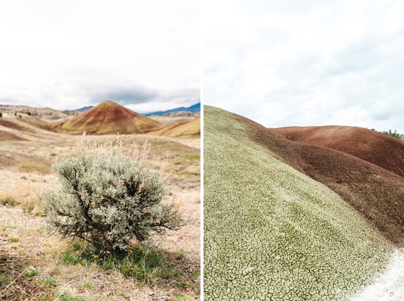 painted hills Roadtrip San Francisco - Vancouver2016 05 17 0030