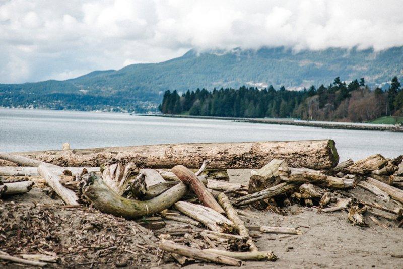 Vancouver beach Roadtrip San Francisco - Vancouver2016 05 17 0054